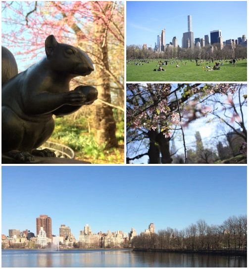 Great parks in NYC - Central Park