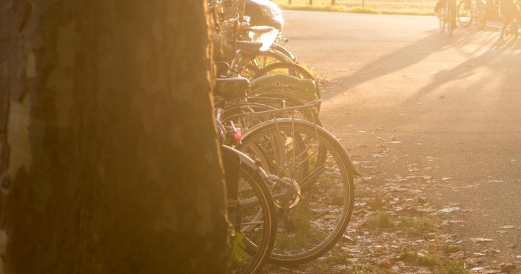 Les capitales européennes du vélo : Amsterdam, Copenhague, Strasbourg