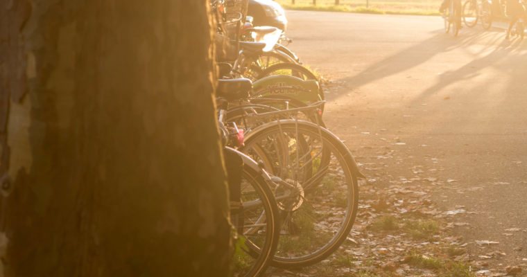 Europe's biking capitals: Amsterdam, Copenhagen, Strasbourg