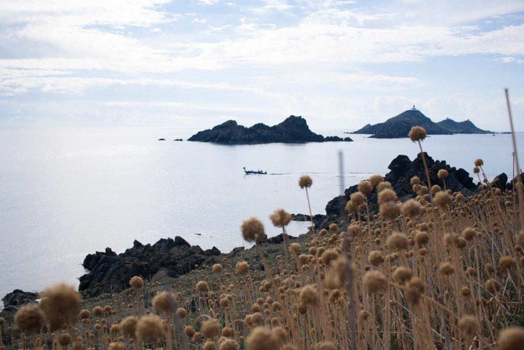 Road-trip in North Corsica - Iles sanguinaires - Ajaccio