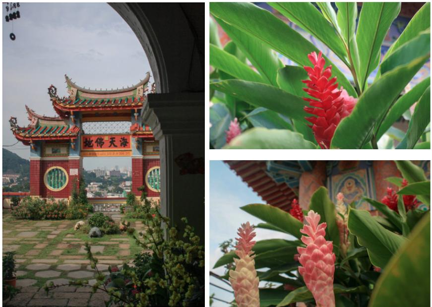 Temple bouddhiste pagode Penang