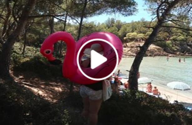 Sea, Salt & Sun: Holidays in Lavandou, South of France